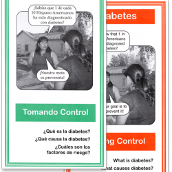 Lo básico del Diabetes (The Basics of Diabetes)