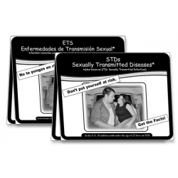 STDs: Sexually Transmitted Diseases Flipchart